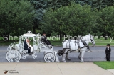 Carriage, Dan & Chelsey