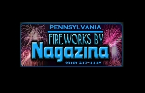 Professional Firework Displays for Weddings