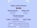 Music For The Moment String Ensembles